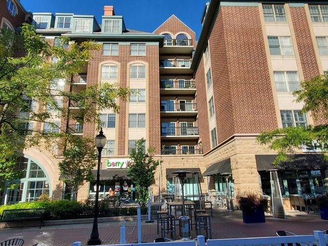44 N Vail Avenue #307, Arlington Heights, IL 60005 (MLS #10881621) :: Helen Oliveri Real Estate