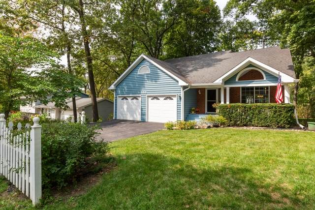 188 Forest Avenue, Lake Zurich, IL 60047 (MLS #10881719) :: Touchstone Group