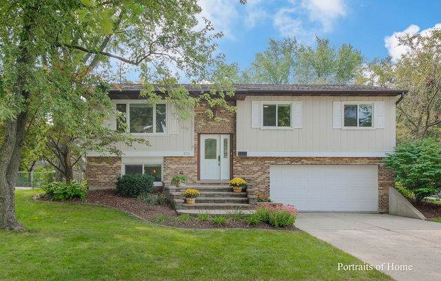 1016 Windsor Drive, Wheaton, IL 60189 (MLS #10881817) :: John Lyons Real Estate