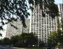4850 S Lake Park Avenue #808, Chicago, IL 60615 (MLS #10881849) :: Littlefield Group