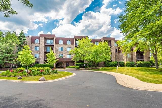 2050 Valencia Drive 210C, Northbrook, IL 60062 (MLS #10881863) :: John Lyons Real Estate