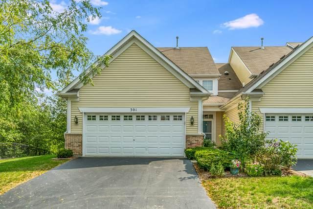 301 Hickory Lane, South Elgin, IL 60177 (MLS #10882538) :: Helen Oliveri Real Estate