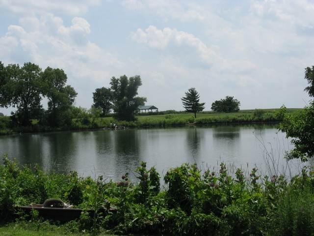 0 Helen Street, Garden Prairie, IL 61038 (MLS #10882581) :: Janet Jurich