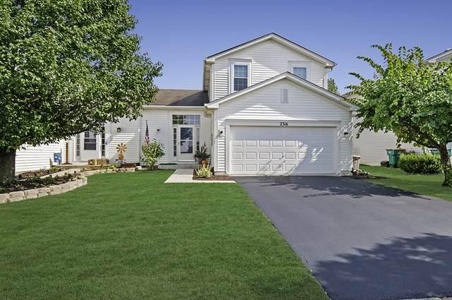 2316 Carpenter Avenue, Plainfield, IL 60586 (MLS #10882902) :: RE/MAX IMPACT