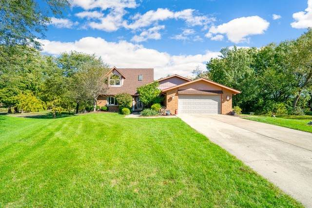 23640 Cottonwood Court, Minooka, IL 60447 (MLS #10883233) :: Suburban Life Realty