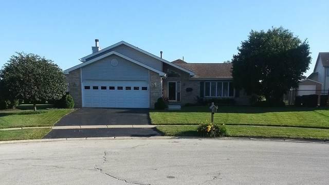 925 W Lark Street, Peotone, IL 60468 (MLS #10883661) :: Property Consultants Realty