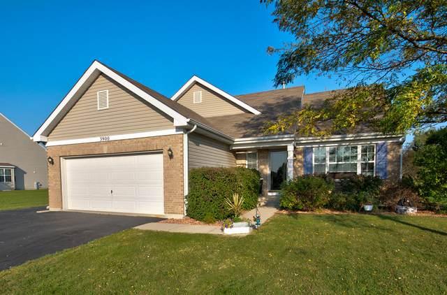 3900 Stockton Drive, Joliet, IL 60436 (MLS #10883674) :: Property Consultants Realty