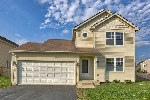254 E Cobbler Court, Round Lake Beach, IL 60073 (MLS #10883725) :: Property Consultants Realty