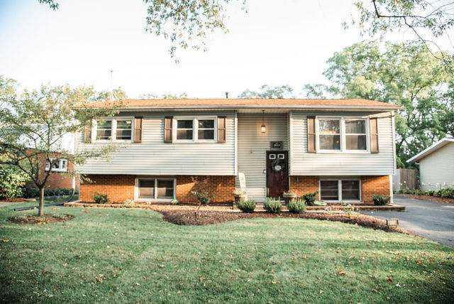 2618 Ravinia Lane, Woodridge, IL 60517 (MLS #10883750) :: Property Consultants Realty