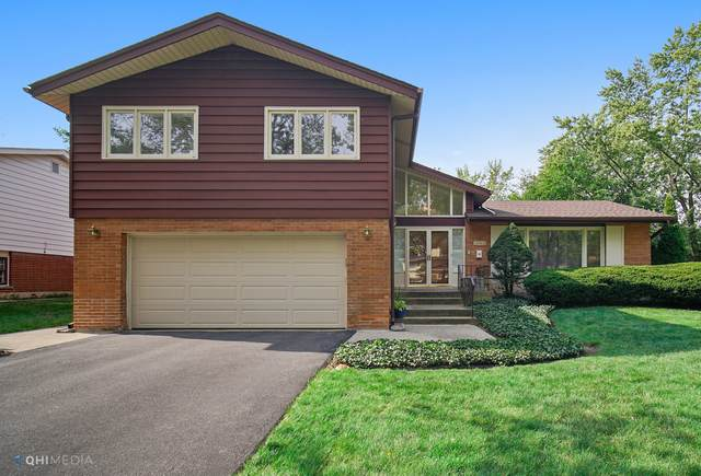 18744 May Avenue, Homewood, IL 60430 (MLS #10883806) :: The Wexler Group at Keller Williams Preferred Realty