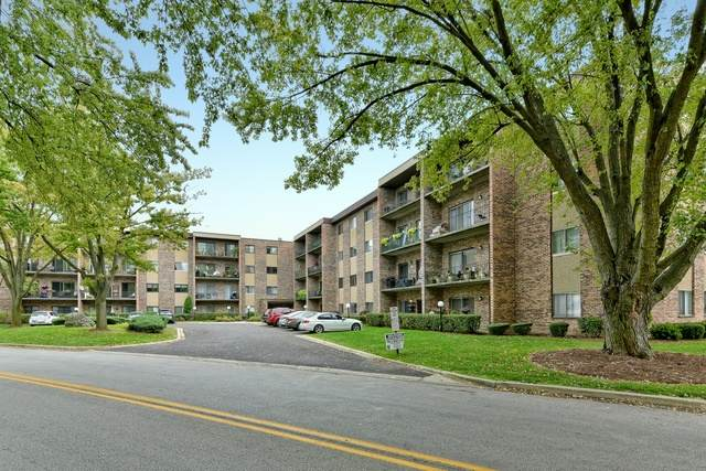 725 Huntington Commons Road #304, Mount Prospect, IL 60056 (MLS #10883825) :: Littlefield Group
