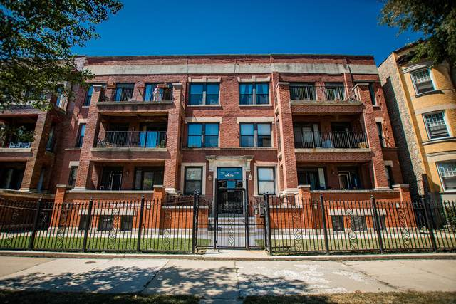 5356 S Michigan Avenue 3S, Chicago, IL 60615 (MLS #10883835) :: Property Consultants Realty