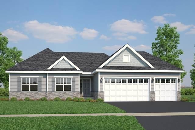 5008 Carpenter Avenue, Oswego, IL 60543 (MLS #10885093) :: Janet Jurich