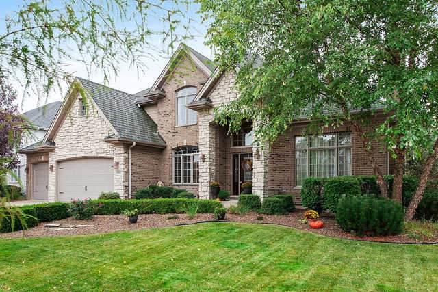 10825 Caribou Lane, Orland Park, IL 60467 (MLS #10885176) :: John Lyons Real Estate