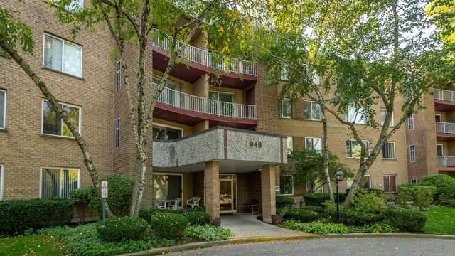 945 E Kenilworth Avenue #217, Palatine, IL 60074 (MLS #10885235) :: Littlefield Group