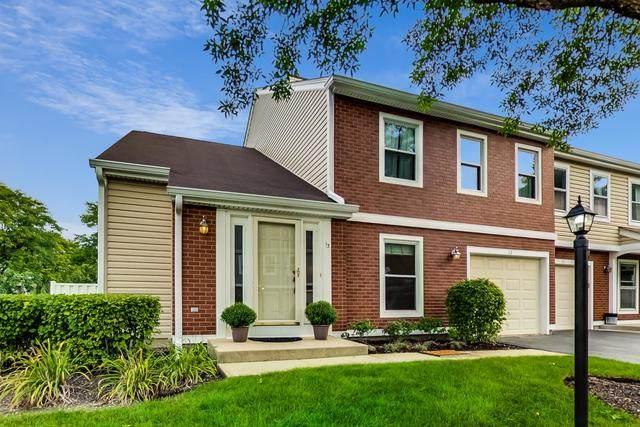13 S Stonington Drive, Palatine, IL 60074 (MLS #10885779) :: John Lyons Real Estate