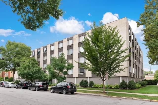 201 S Maple Avenue #207, Oak Park, IL 60302 (MLS #10886217) :: Littlefield Group