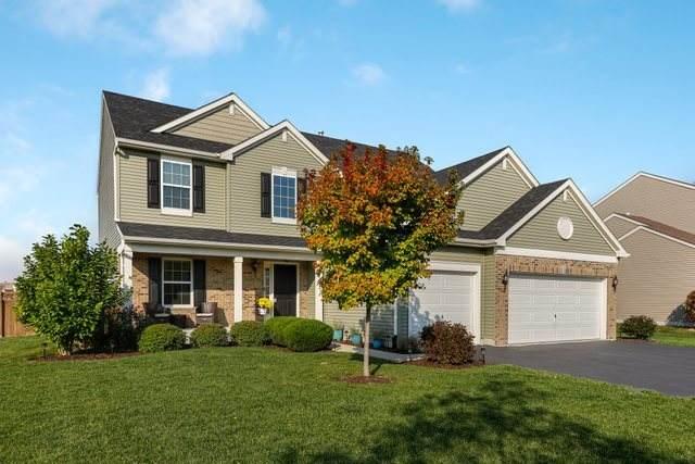 509 Flintock Street, Joliet, IL 60431 (MLS #10886327) :: Lewke Partners