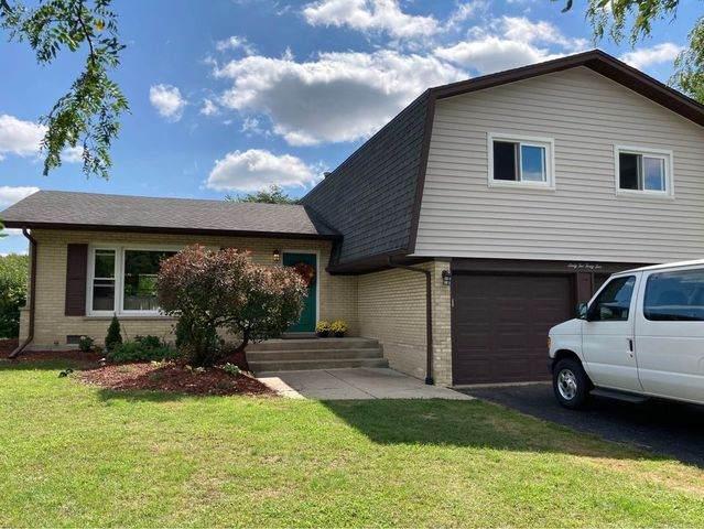 6245 Arcadia Drive, Tinley Park, IL 60477 (MLS #10886460) :: Ani Real Estate