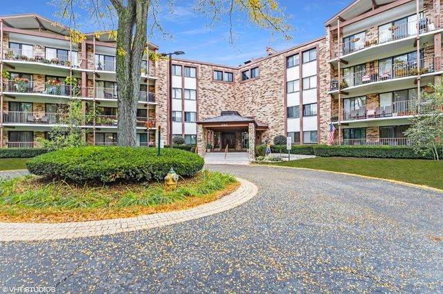250 W Parliament Place #214, Mount Prospect, IL 60056 (MLS #10887083) :: The Wexler Group at Keller Williams Preferred Realty