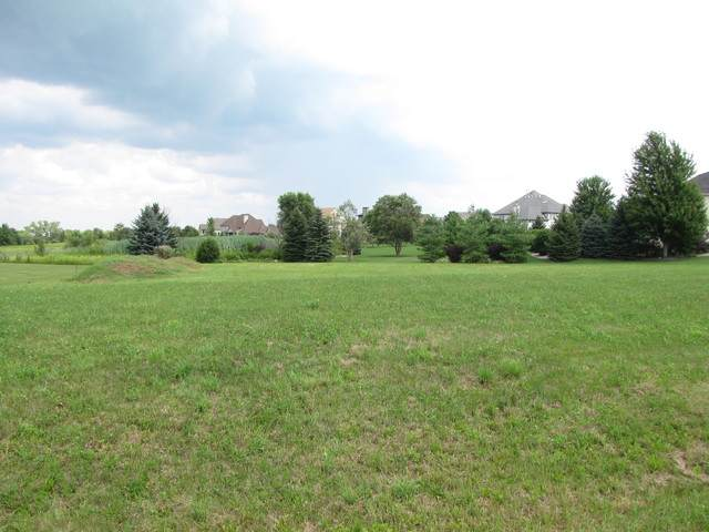 Lot 49 Audrey Avenue, Yorkville, IL 60560 (MLS #10887792) :: BN Homes Group