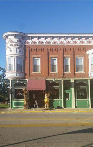 411 Main Street, Savanna, IL 61074 (MLS #10888124) :: BN Homes Group