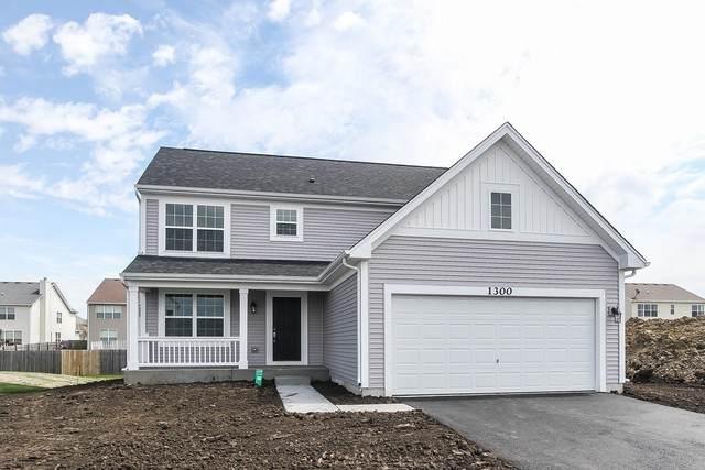 6615 Hadrian Lot#84 Drive, Joliet, IL 60431 (MLS #10888442) :: BN Homes Group