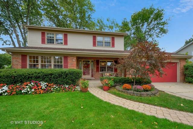 517 S Reuter Drive, Arlington Heights, IL 60005 (MLS #10889074) :: BN Homes Group