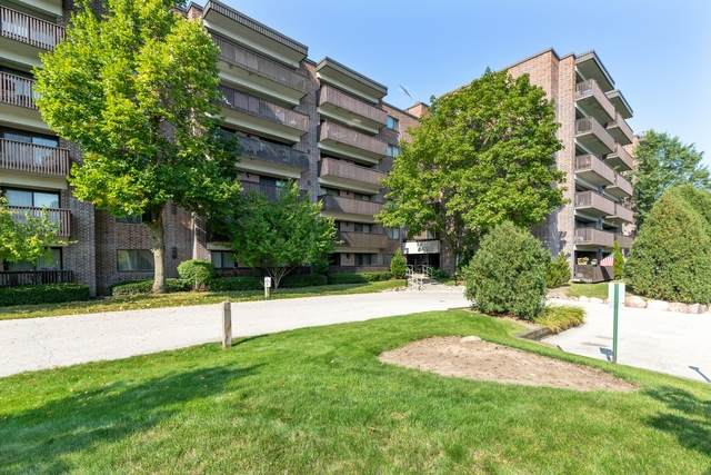 920 Vose Drive #203, Gurnee, IL 60031 (MLS #10889205) :: Property Consultants Realty