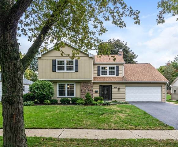 928 Royal Blackheath Court, Naperville, IL 60563 (MLS #10889254) :: Lewke Partners
