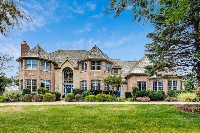1439 Stevenson Drive, Libertyville, IL 60048 (MLS #10889663) :: John Lyons Real Estate
