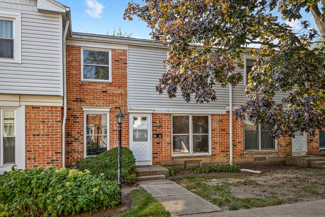4023 Oxford Court, Streamwood, IL 60107 (MLS #10889948) :: Helen Oliveri Real Estate