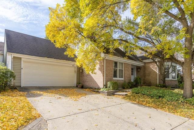 411 River Bluff Circle, Naperville, IL 60540 (MLS #10890213) :: Schoon Family Group