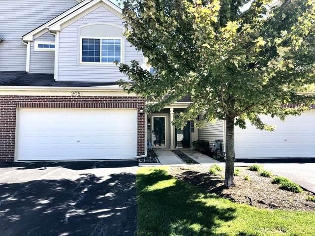 205 Courtland Drive B, South Elgin, IL 60177 (MLS #10890576) :: John Lyons Real Estate