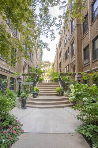 636 W Waveland Avenue 3D, Chicago, IL 60613 (MLS #10891300) :: The Wexler Group at Keller Williams Preferred Realty