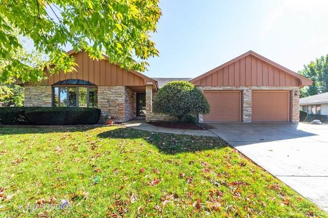 101 Caryville Lane, Schaumburg, IL 60193 (MLS #10891495) :: Littlefield Group