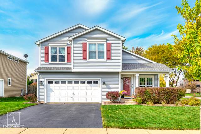 771 Parc Court, Lake In The Hills, IL 60156 (MLS #10892543) :: Lewke Partners