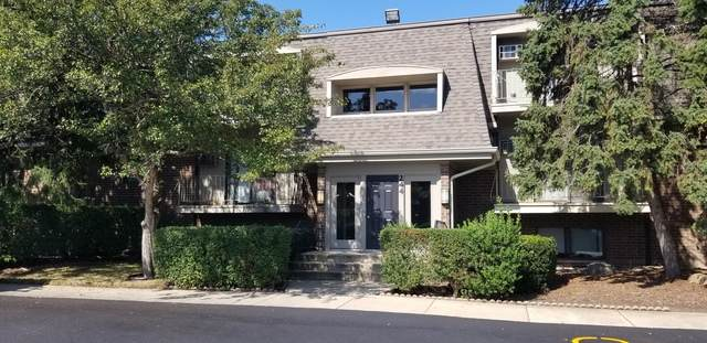 244 E Bailey Road K, Naperville, IL 60565 (MLS #10892638) :: BN Homes Group