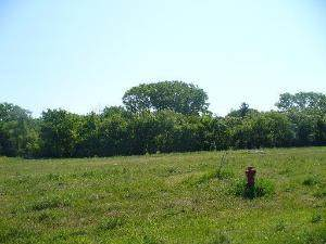 7240 Bannockburn Circle, Lakewood, IL 60014 (MLS #10894126) :: Suburban Life Realty