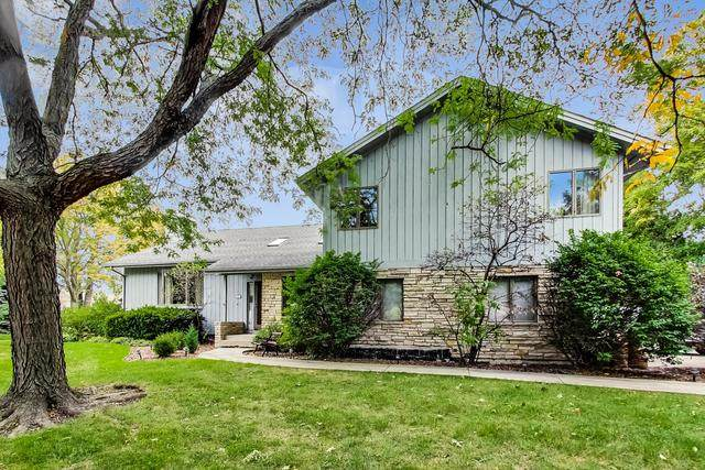 305 Windsor Avenue, Wood Dale, IL 60191 (MLS #10894795) :: BN Homes Group