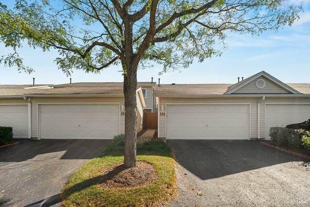 351 Dogwood Terrace, Buffalo Grove, IL 60089 (MLS #10894951) :: John Lyons Real Estate