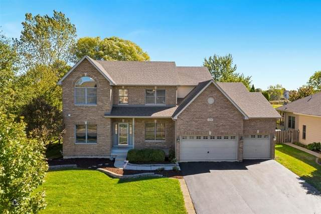 326 Prairieview Drive, Oswego, IL 60543 (MLS #10895709) :: John Lyons Real Estate
