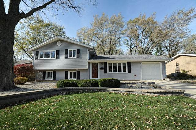 504 Slingerland Drive, Schaumburg, IL 60193 (MLS #10895804) :: BN Homes Group