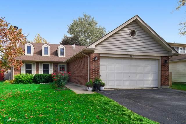 825 Bloomfield Lane, Aurora, IL 60504 (MLS #10895973) :: Lewke Partners