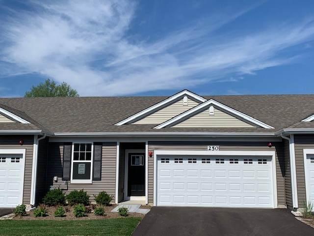 250 Sussex Lane, North Aurora, IL 60542 (MLS #10896187) :: Helen Oliveri Real Estate