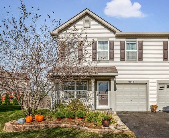 2540 Cesario Drive, Hampshire, IL 60140 (MLS #10896378) :: Helen Oliveri Real Estate