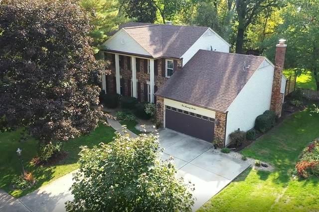 177 Jervey Lane, Bartlett, IL 60103 (MLS #10896469) :: Schoon Family Group