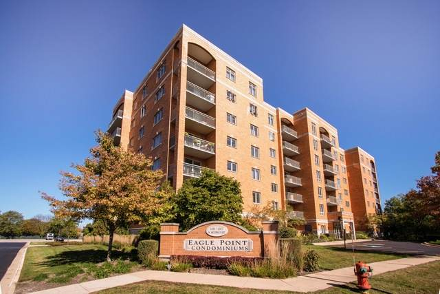 6807 N Milwaukee Avenue #207, Niles, IL 60714 (MLS #10896792) :: The Wexler Group at Keller Williams Preferred Realty