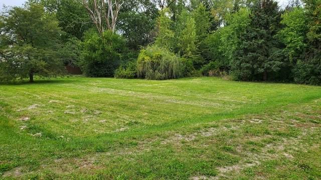 218 E Briarcliff Road, Bolingbrook, IL 60440 (MLS #10897348) :: Carolyn and Hillary Homes