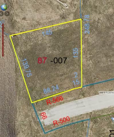 Lot 87 Erin Avenue, Clifton, IL 60927 (MLS #10897749) :: John Lyons Real Estate